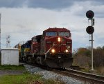 CP 235 CP 9619 CP 9568 ICE 6448 NREX 7212